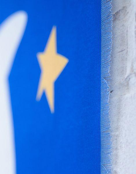 shandor-tenture murale décoration vol d'oiseaux bleu