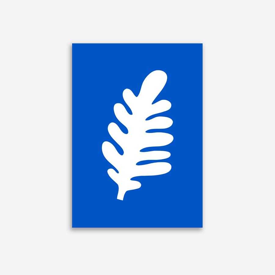 Shandor affiche feuille bleue