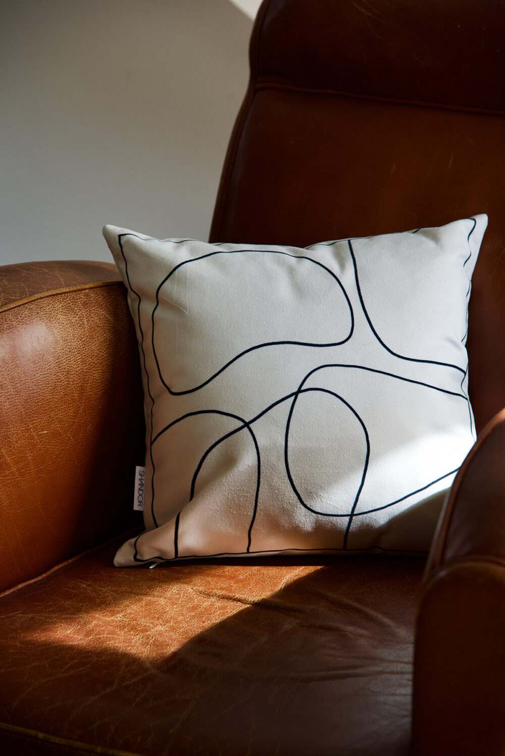 Coussin en velours Made in France recto verso Esquisse